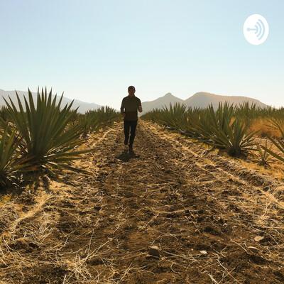 José en Oaxaca