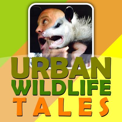Urban Wildlife Tales