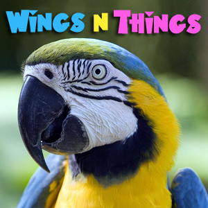 WingsNThings - Birds & Parrots as Pets - All About Pet Birds - Pets & Animals on Pet Life Radio (PetLifeRadio.com)