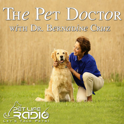 The Pet Doctor - Keeping your pets healthy & pet wellness - Pets & Animals on Pet Life Radio (PetLifeRadio.com)