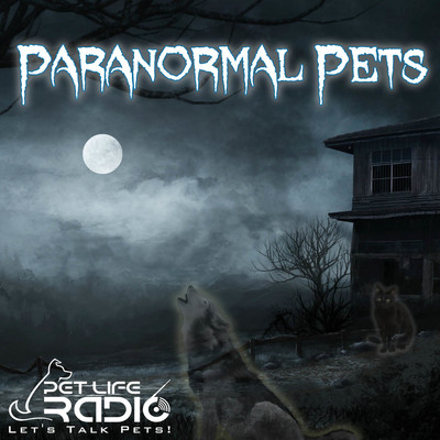 Paranormal Pets - Ghostly Encounters with Past Pets - Pets & Animals on Pet Life Radio (PetLifeRadio.com)