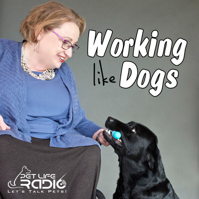 Working Like Dogs - Service Dogs and Working Dogs - Pets & Animals on Pet Life Radio (PetLifeRadio.com)