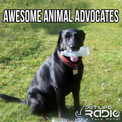 Awesome Advocates- For Dogs, Cats, & other Pets on Pet Life Radio (PetLifeRadio.com)