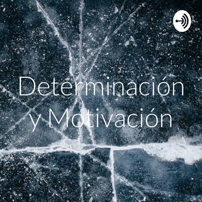 Determinación y Motivación