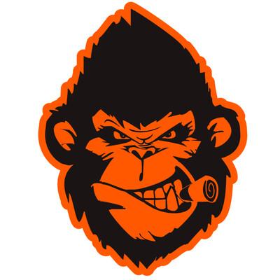 Dirt Monkey university Podcast