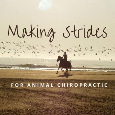 Making Strides for Animal Chiropractic