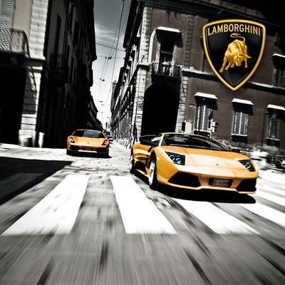 The World of Lamborghini