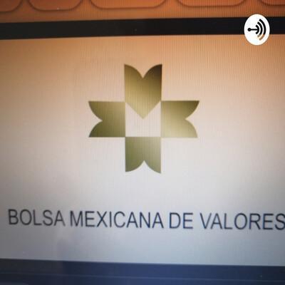 ORGANIZACIÓN Y FUNCIONAMIENTO DE LAS CASAS DE BOLSA