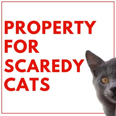Property for Scaredy Cats Podcast