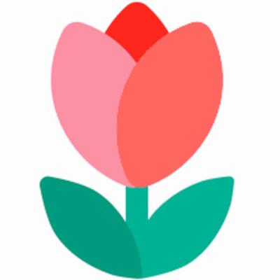 Tulips FM