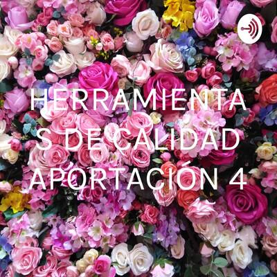HERRAMIENTAS DE CALIDAD APORTACIÓN 4