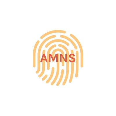 AMNS Repair