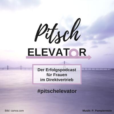 Pitsch Elevator