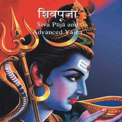 Advanced Shiva Puja and Yagna