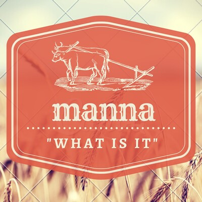 "Manna - ""What is it?"""