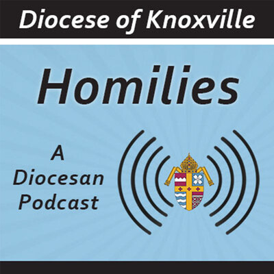 Diocese of Knoxville Homilies