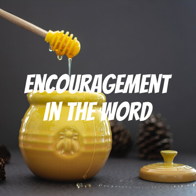Encouragement In The Word