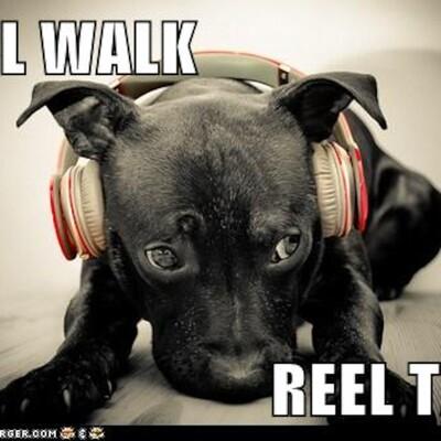 Reel walk reel talk