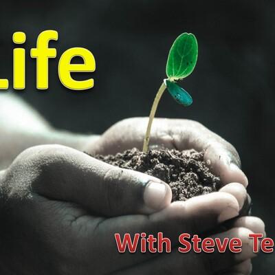 Life with Steve Teed
