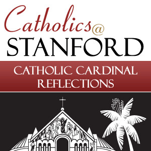 Catholic Cardinal Reflections