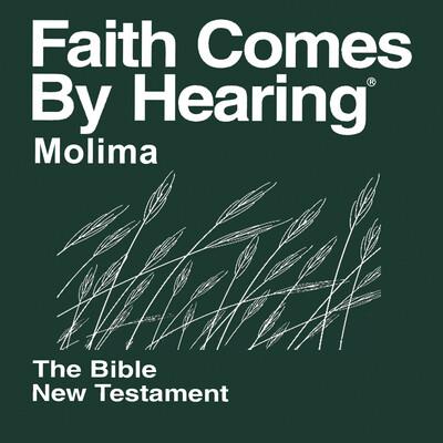 Molima Bible (Non-Dramatized)