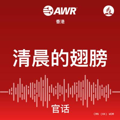AWR Mandarin - WOM 清晨的翅膀 - Chinese