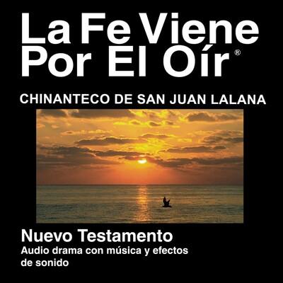 Chinanteco de San Juan Lalana Biblia - Chinanteco de San Juan Lalana Bible