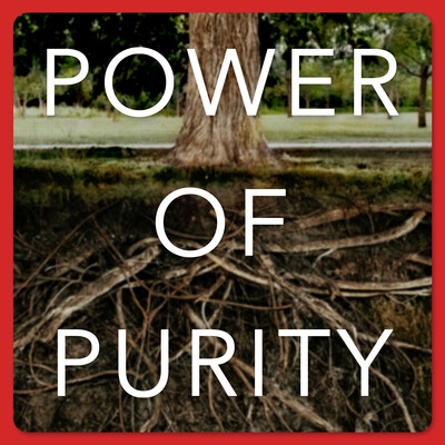 Power of Purity   Helping Men to Honor God with their Sexual Gift