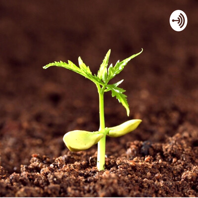 Grow In Grace Podcast