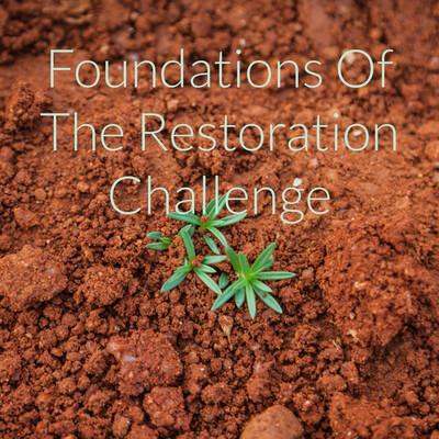 Foundations Of The Restoration Challenge