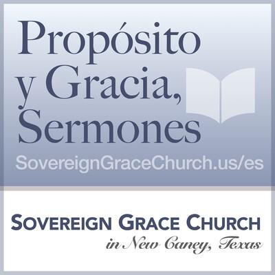 Propósito y Gracia, Sermones