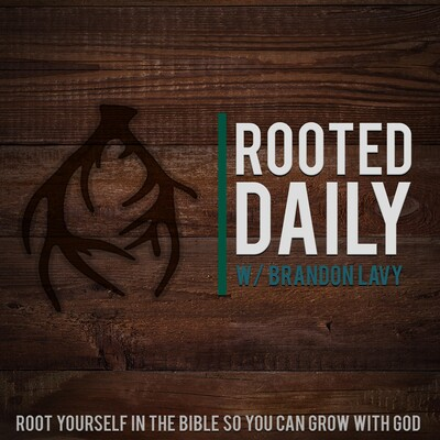 Rooted Daily with Brandon Lavy