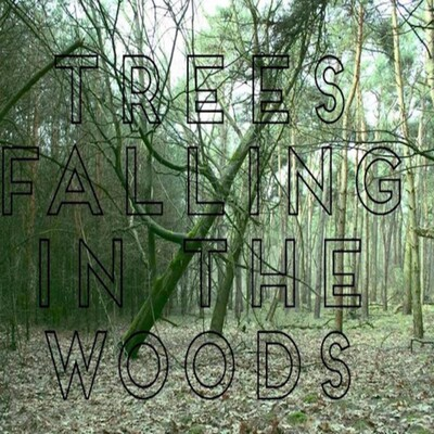 Trees Falling in The Woods
