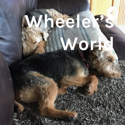 Wheeler's World