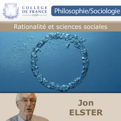 Rationalité et sciences sociales