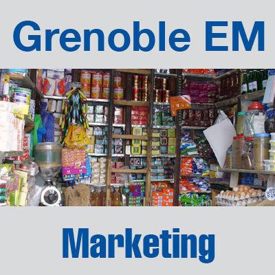 Marketing : Études et Analyses - Audio & Document collection