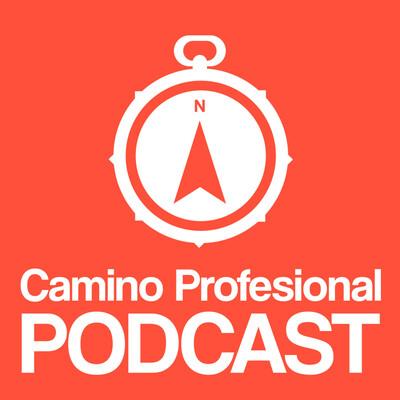 Camino Profesional   Desarrollo Personal Y Profesional