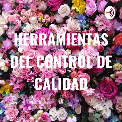 HERRAMIENTAS DEL CONTROL DE CALIDAD