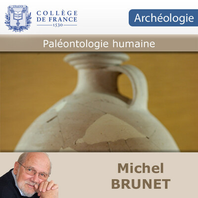 Paléontologie humaine