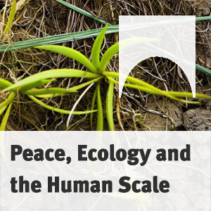Peace, Ecology and the Human Scale: Leopold Kohr's Idea of Small Societies being Up-to-Date