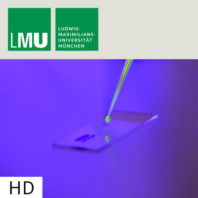 Photoswitches: A New Addition to the Molecular Toolkit – HD