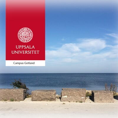 E-learning Campus Gotland