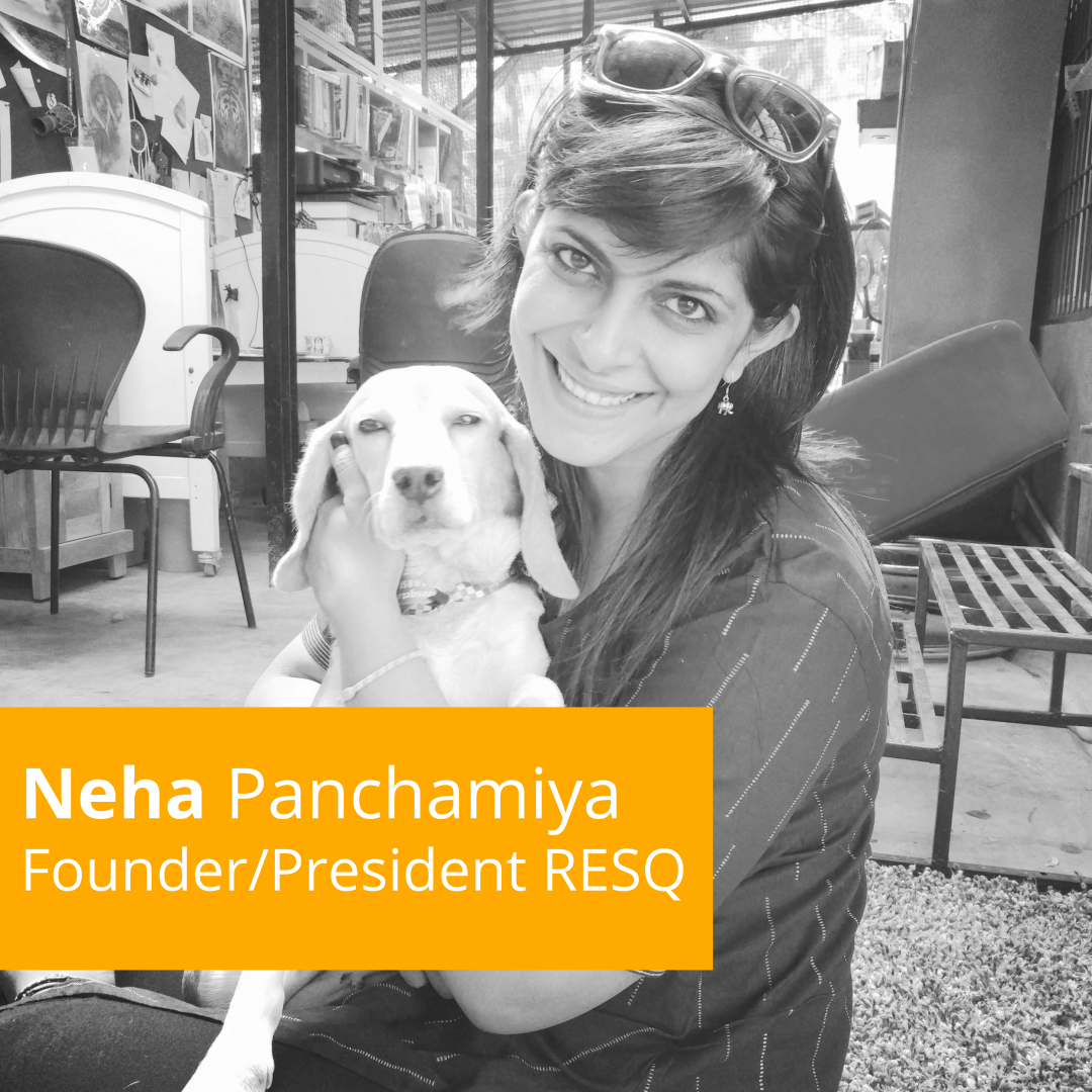 Episode 2: Neha Panchamiya- Just being 'Paw'sitive!