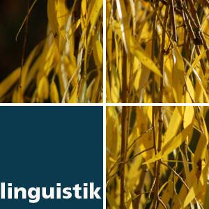 Grundlagen der Linguistik - WS 2011/12