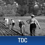 Les paysans en France (XIXe-XXIe siècle)
