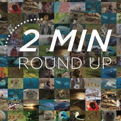 2Min News Roundup