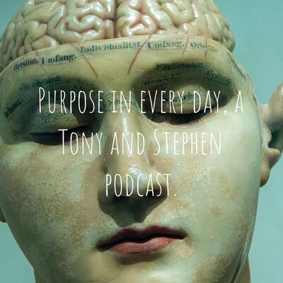 Psych Study by Stephen