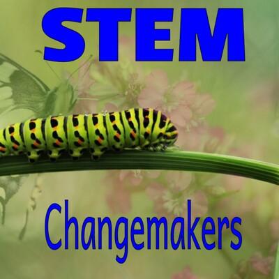 STEM Changemakers
