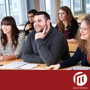 Examensarbete vid Lärande och samhälle
