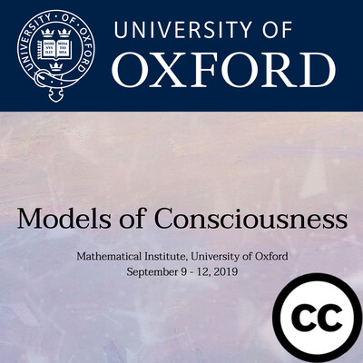 Models of Consciousness